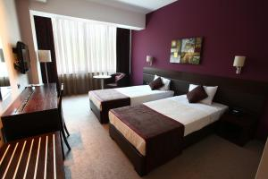 Queen's Hotel, Hotels  Skopje - big - 6