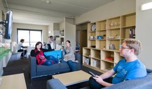 Campus Summer Stays - Te Puni Village, Hostely  Wellington - big - 1