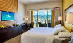 Deluxe King Room with Mountain View  (No Resort Fee)