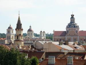 Vilnius Apartments & Suites, Апартаменты  Вильнюс - big - 17