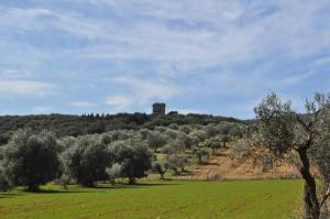 Tenuta Agricola dell'Uccellina, Farm stays  Fonteblanda - big - 88