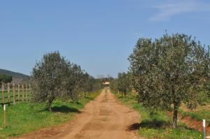 Tenuta Agricola dell'Uccellina, Farm stays  Fonteblanda - big - 116