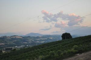 Agriturismo Monte Maggio, Farmy  Lapedona - big - 22