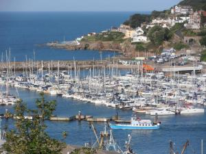 Woodlands Guest House, Affittacamere  Brixham - big - 54