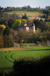 Château de Tanay B&B
