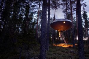 Treehotel (12 of 47)