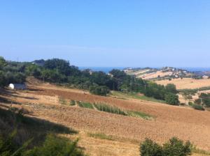 Il Frantoio, Farmy  Lapedona - big - 18