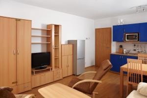 Apartmány Klínovec, Apartments  Loučná pod Klínovcem - big - 24