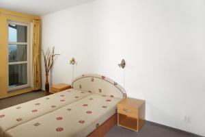 Apartmány Klínovec, Apartments  Loučná pod Klínovcem - big - 9