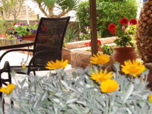 Angela Hotel, Hotely  Agia Marina Aegina - big - 79