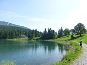 Berghotel Obersee, Hotels  Näfels - big - 41