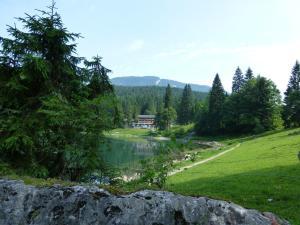 Berghotel Obersee, Hotels  Näfels - big - 43