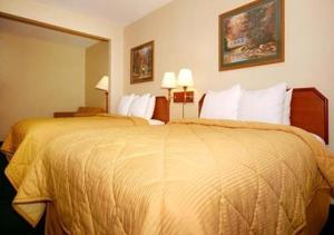 Habitación Doble Estándar con 2 camas dobles - No fumadores