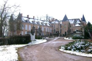 Château d'Island Vézelay, Отели  Pontaubert - big - 64