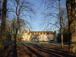 Château d'Island Vézelay, Отели  Pontaubert - big - 50