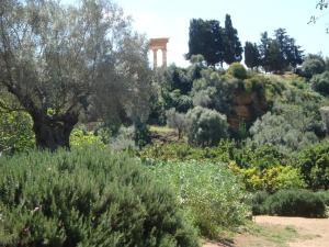 Guest House Artemide, Panziók  Agrigento - big - 39