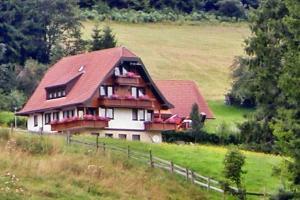 Martina Frey Ferienwohnungen, Apartments  Baiersbronn - big - 26