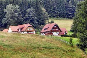 Martina Frey Ferienwohnungen, Apartments  Baiersbronn - big - 28