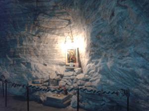 Pensiunea Elena, Penzióny  Tîrgu Ocna - big - 67