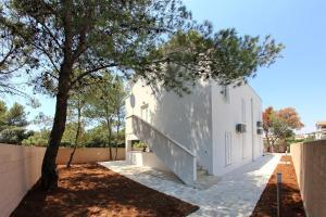 Apartments Vila Moli, Apartments  Bibinje - big - 18