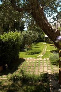 Locanda Delle Mura Anna De Croy, Bed and breakfasts  Magliano in Toscana - big - 30