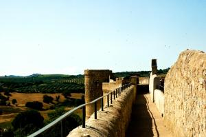 Locanda Delle Mura Anna De Croy, Bed and breakfasts  Magliano in Toscana - big - 25