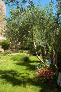 Locanda Delle Mura Anna De Croy, Bed and breakfasts  Magliano in Toscana - big - 17