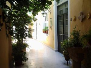 62 St. Guesthouse, Penzióny  Mérida - big - 16