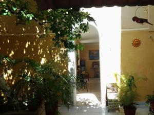62 St. Guesthouse, Penzióny  Mérida - big - 15