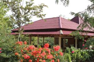 Waecicu Beach Inn, Guest houses  Labuan Bajo - big - 44