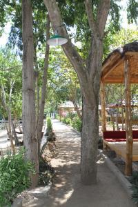 Waecicu Beach Inn, Гостевые дома  Лабуан Баджо - big - 46