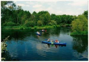 Cierszewo Ośrodek Rekreacyjno - Szkoleniowy, Vendégházak  Cierszewo - big - 12