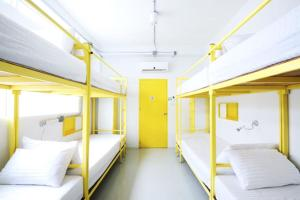 Bunk Bed in 8 Bed Mixed Dormitory