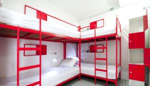 Bunk Bed in 4 bed mixed dormitory