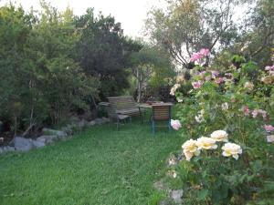 Il Vecchioliveto di Ornella, Bed & Breakfasts  Marrùbiu - big - 9