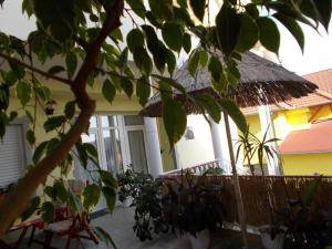 Gyöngyi Apartman, Apartmány  Hévíz - big - 28