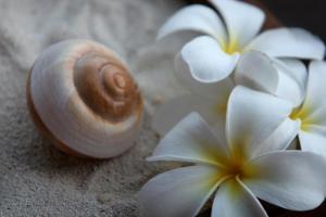 Sofitel Bora Bora Marara Beach Resort, Hotel  Bora Bora - big - 61