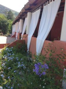 Residence Salina - Acquarela, Apartmanok  Malfa - big - 21