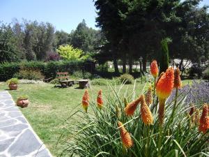 Villa San Ignacio, Apartmanok  San Carlos de Bariloche - big - 16