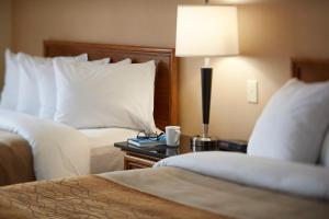 Comfort Inn East Sudbury, Hotels  Sudbury - big - 31