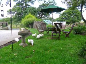 Tithe Barn Bed and Breakfast, Bed & Breakfast  Carnforth - big - 36