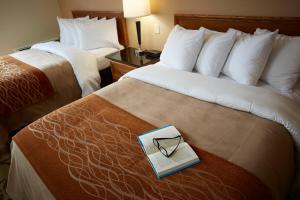 Comfort Inn Sudbury, Hotel  Sudbury - big - 9
