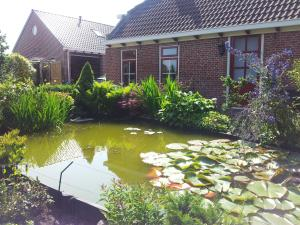 Waddenstee, Case vacanze  Westernieland - big - 41