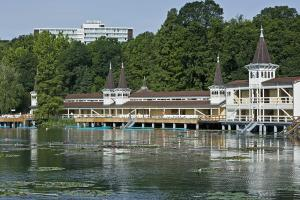 Danubius Health Spa Resort Hévíz, Rezorty  Hévíz - big - 46