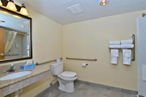 King Room with Roll-in Shower