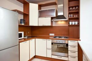 Moscow Suites Apartments Arbat, Apartmány  Moskva - big - 11