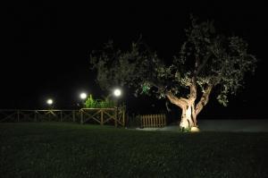 Agriturismo Monte Maggio, Agriturismi  Lapedona - big - 43