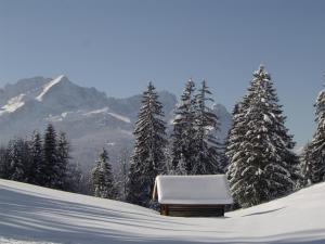 Hotel Königshof, Hotels  Garmisch-Partenkirchen - big - 23