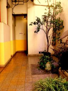 Gran Hotel Oriental, Hotely  Buenos Aires - big - 17