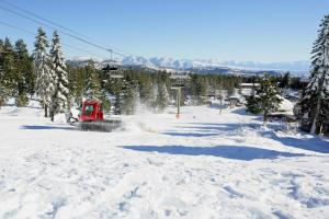 Eagle Run by 101 Great Escapes, Apartmanok  Mammoth Lakes - big - 2